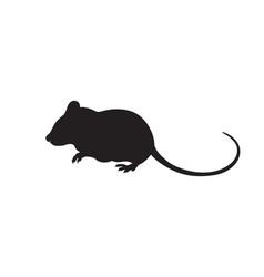 Mouse silhouette icon design vector