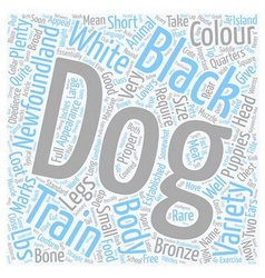 Newfoundland The Aristocrat Among Dogs text vector image