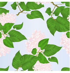 seamless texture branch of white lilac vector image