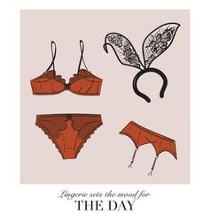 Sexy lingerie set bra and undies underwear vector