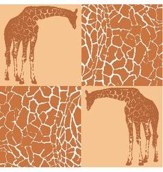 Giraffe patterns for wallpaper vector image vector image