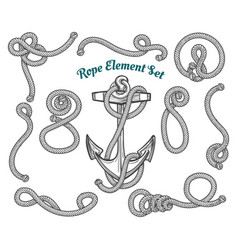 hand drawn rope element set vector image vector image