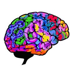 Brainwaves vector image