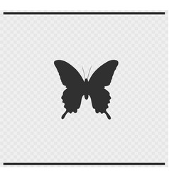 butterfly icon black color on transparent vector image