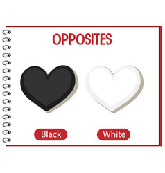 Opposite words with black and white vector