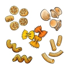 Big collection of italian pasta sketch style vector