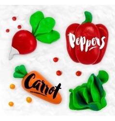 Plasticine vegetables carrot vector image vector image