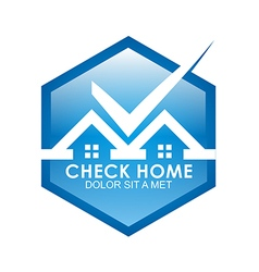 blue house checks twins vector image