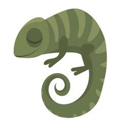 cartoon chameleon a cute vector image
