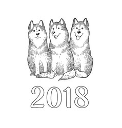 Congratulation card with three funny husky dogs vector
