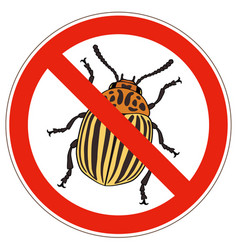 forbidden sign of colorado potato beetle vector image