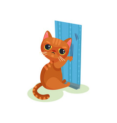 naughty kitten scratching wallpaper mischievous vector image