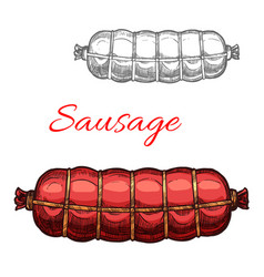 Sausage sketch meat icon vector