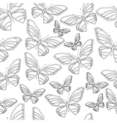 Butterfly4 vector image