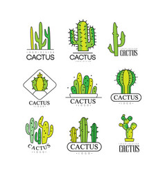 Cactus logo design set desert plant green badges vector