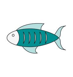 delicious fresh fish vector image