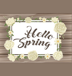 hello spring sign with white roses vector image