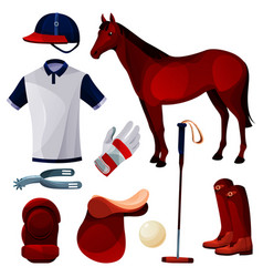 polo game equipment sport tools set icons vector image