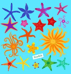 sea stars set multicolored starfish starfishes vector image