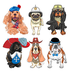 set hipster dogs in clothes vector image