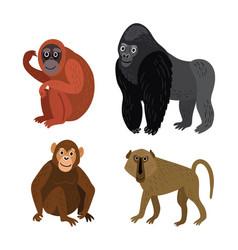 set monkey rangutan baboon gorilla ch vector image