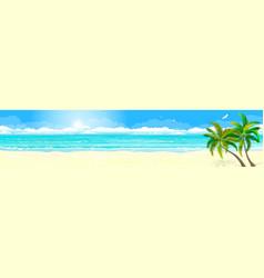 tropics sand beach ocean vector image
