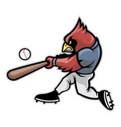 cardinal baseball vector image