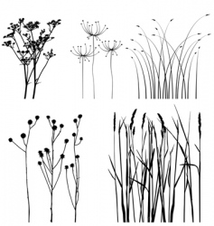 Black and white plants silhouettes set vector image vector image