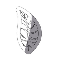 Figure leaf of plant icon vector