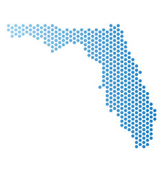 Florida map hexagon scheme vector