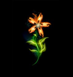 glowing flower modern orange colorful ornamental vector image