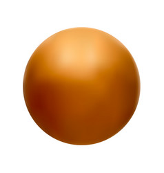 orange ball on a white vector image