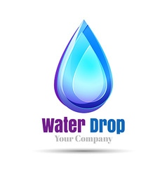 Water drop Logo design template Natural Mineral vector image