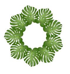 philodendron monstera leaf wreath vector image