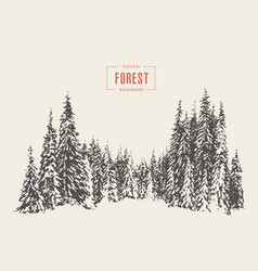Pine forest hand drawn sketch vector