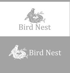 vintage birds nest logo vector image