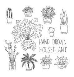 Big set of hand drawn houseplants monstera bamboo vector