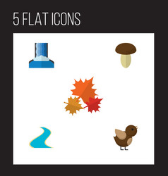 flat icon nature set of canadian tributary vector image