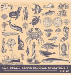 full collection original nautical engravings vector image