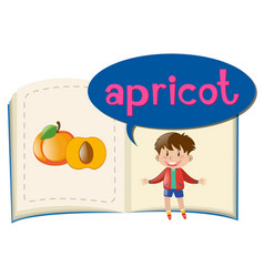 Little boy and fresh apricot vector