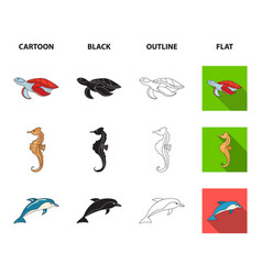 merlin turtle and other speciessea animals set vector image