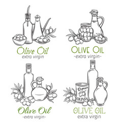 Olive oil sketch design vector