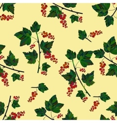 red berries template vector image
