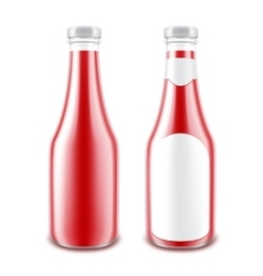 Set of GlassTomato Ketchup Bottle for Branding vector image