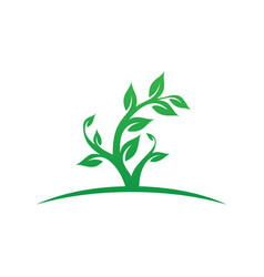tree leaf ecology logo image vector image
