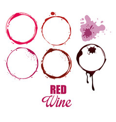 Wine label circles icon vector