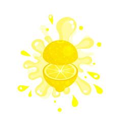 Sliced lemon juice splashing colorful fresh juicy vector