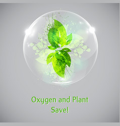 plant and leaves in a bubble vector image vector image