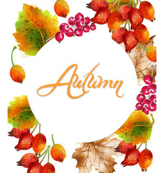 autumn background watercolor eglatine fall leaves vector image