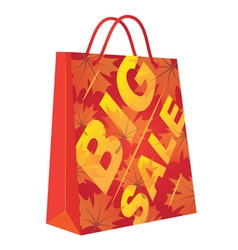Autumn Big Sale vector image